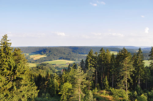 Single wellness schwarzwald